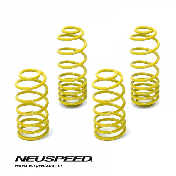 Neuspeed Race Spring Kit